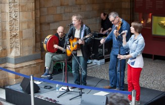 2012 International Music Day, Natural History Museum, London.